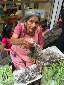 Buying live Jumiles in the mercado Taxco, Mexico