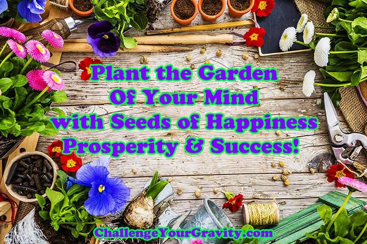 Seed your mind for success, prosperity and happiness
